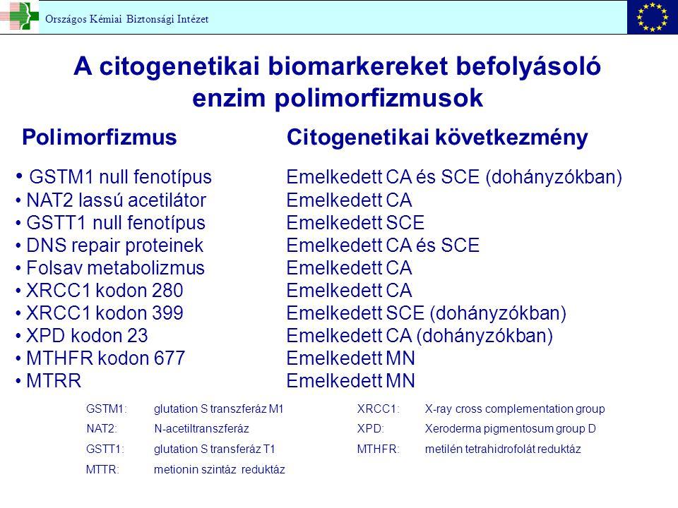 GSTM1: glutation S transzferáz M1XRCC1: X-ray cross complementation group NAT2: N-acetiltranszferázXPD:Xeroderma pigmentosum group D GSTT1: glutation