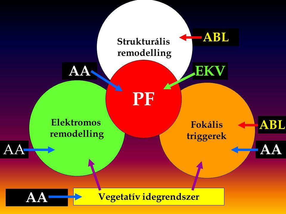 Strukturális remodelling Elektromos remodelling Fokális triggerek PF Vegetatív idegrendszer ABL AA EKV ABL AA
