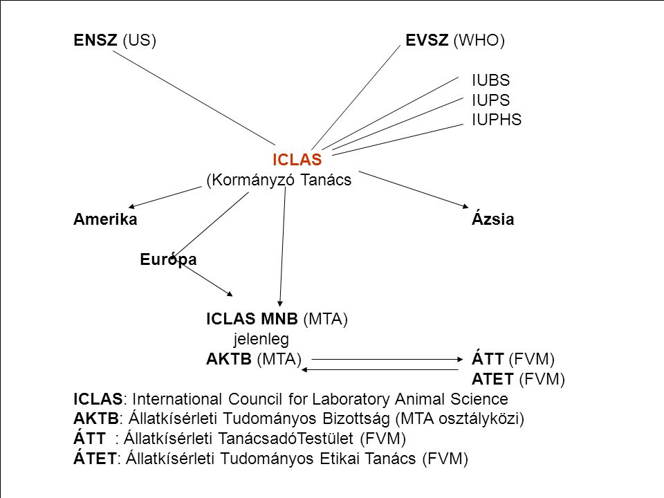 ENSZ (US)EVSZ (WHO) IUBS IUPS IUPHS ICLAS (Kormányzó Tanács AmerikaÁzsia Európa ICLAS MNB (MTA) jelenleg AKTB (MTA) ÁTT (FVM) ATET (FVM) ICLAS: Intern