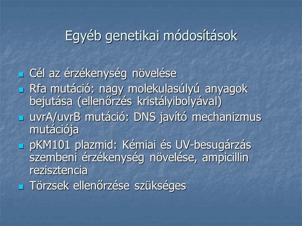 Egyéb genetikai módosítások Cél az érzékenység növelése Cél az érzékenység növelése Rfa mutáció: nagy molekulasúlyú anyagok bejutása (ellenőrzés krist