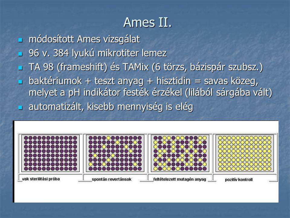 Ames II. módosított Ames vizsgálat módosított Ames vizsgálat 96 v. 384 lyukú mikrotiter lemez 96 v. 384 lyukú mikrotiter lemez TA 98 (frameshift) és T
