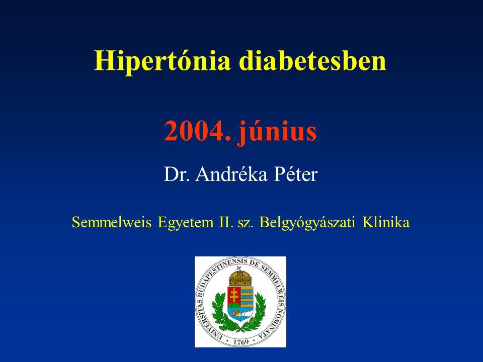 Hipertónia diabetesben 2004. június Dr. Andréka Péter Semmelweis Egyetem II. sz. Belgyógyászati Klinika