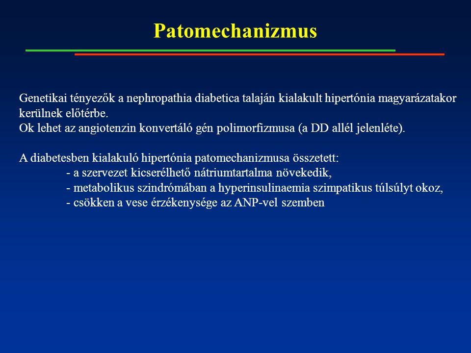 Patomechanizmus Genetikai tényezők a nephropathia diabetica talaján kialakult hipertónia magyarázatakor kerülnek előtérbe. Ok lehet az angiotenzin kon