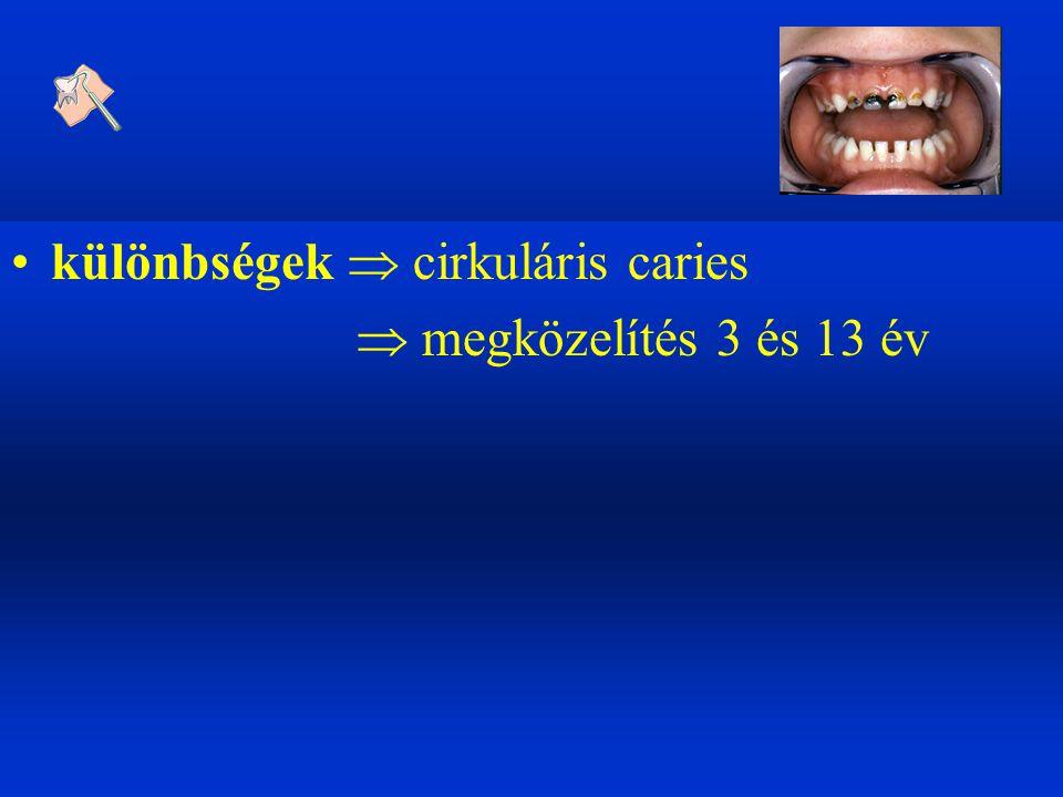 3-6 év  tejfog anatómia, morfológia  állcsont fejlődés  interceptív ortodoncia