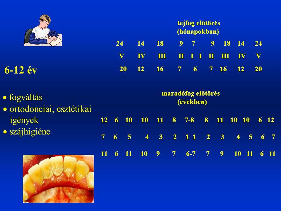 6-12 év  fogváltás  ortodonciai, esztétikai igények  szájhigiéne tejfog előtörés (hónapokban) 24 14 18 9 7 9 18 14 24 V IV III II I I II III IV V 2