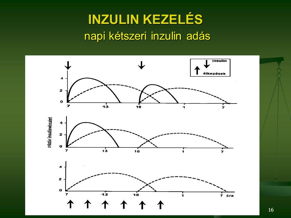 16 INZULIN KEZELÉS napi kétszeri inzulin adás