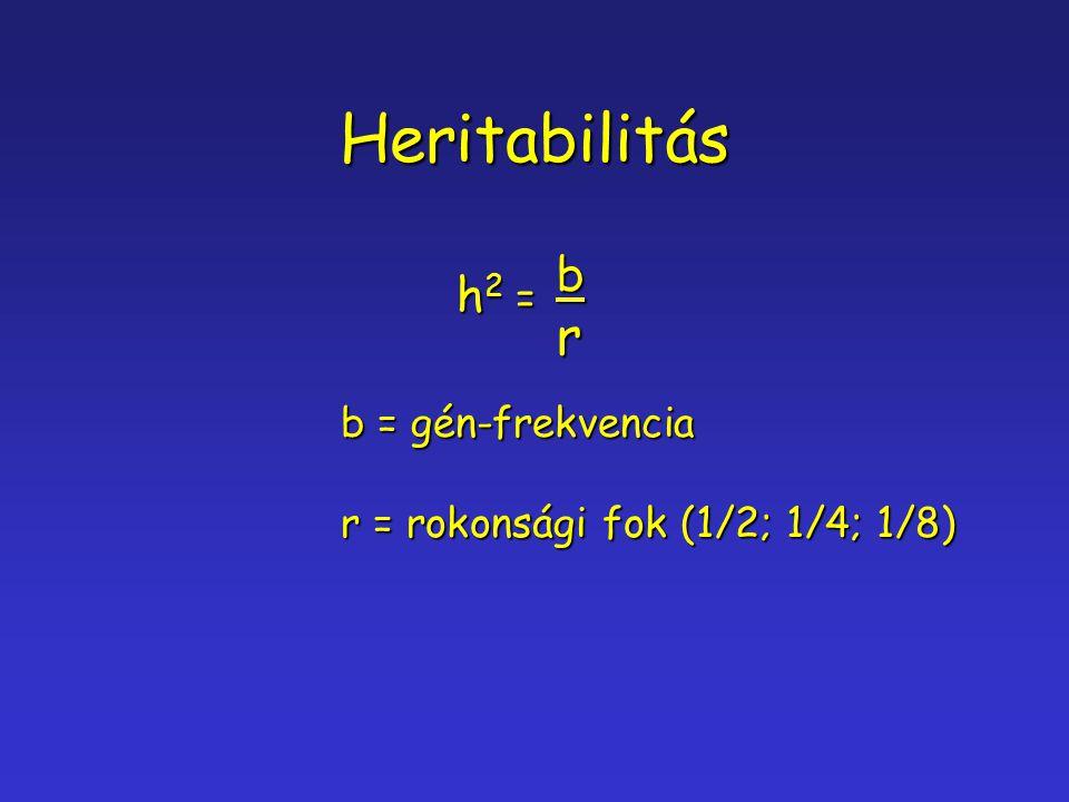 Heritabilitás h2 =h2 =h2 =h2 =br b = gén-frekvencia r = rokonsági fok (1/2; 1/4; 1/8)