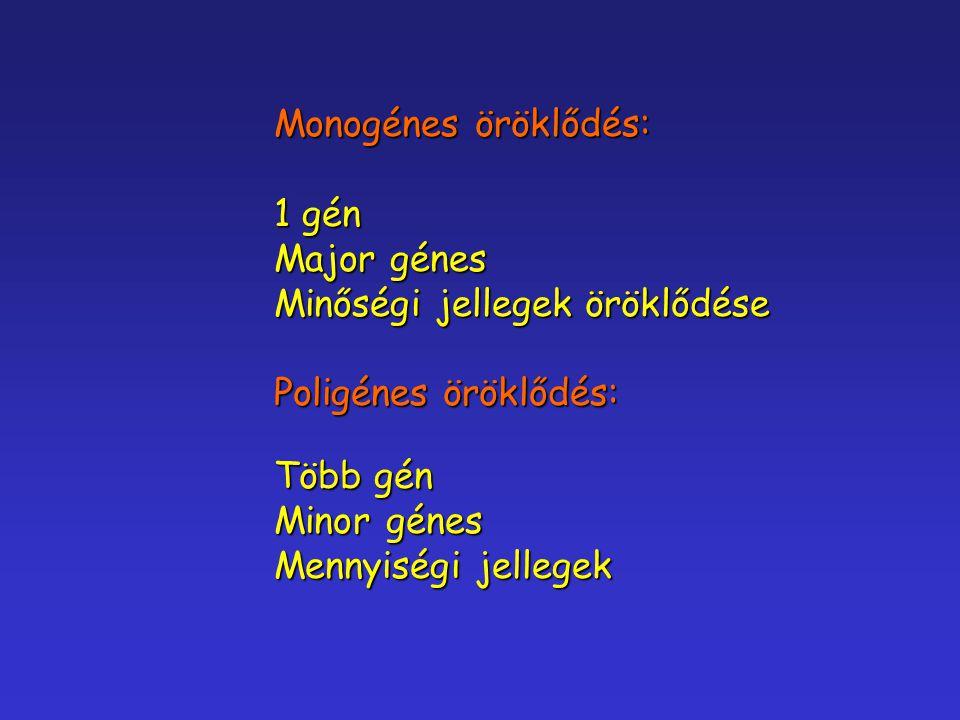 Monogénes öröklődés: 1 gén Major génes Minőségi jellegek öröklődése Poligénes öröklődés: Több gén Minor génes Mennyiségi jellegek