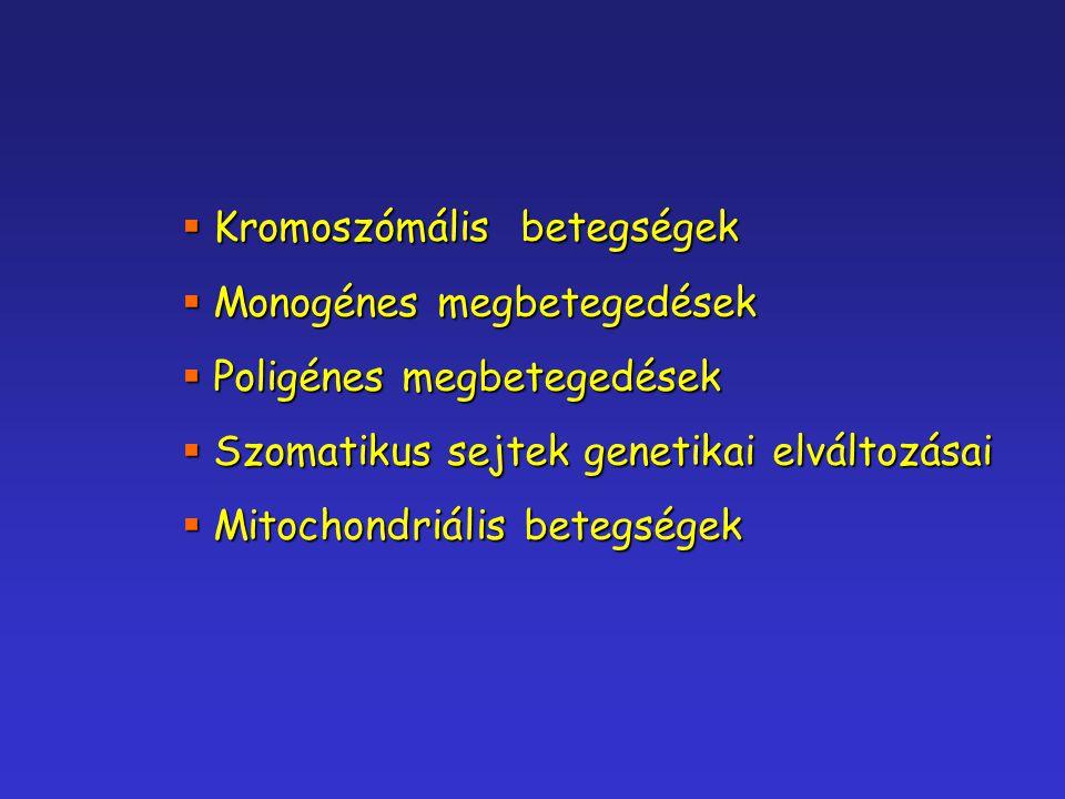  Kromoszómális betegségek  Monogénes megbetegedések  Poligénes megbetegedések  Szomatikus sejtek genetikai elváltozásai  Mitochondriális betegség