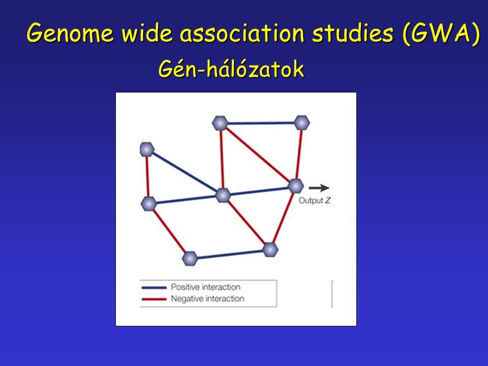 Genome wide association studies (GWA) Gén-hálózatok