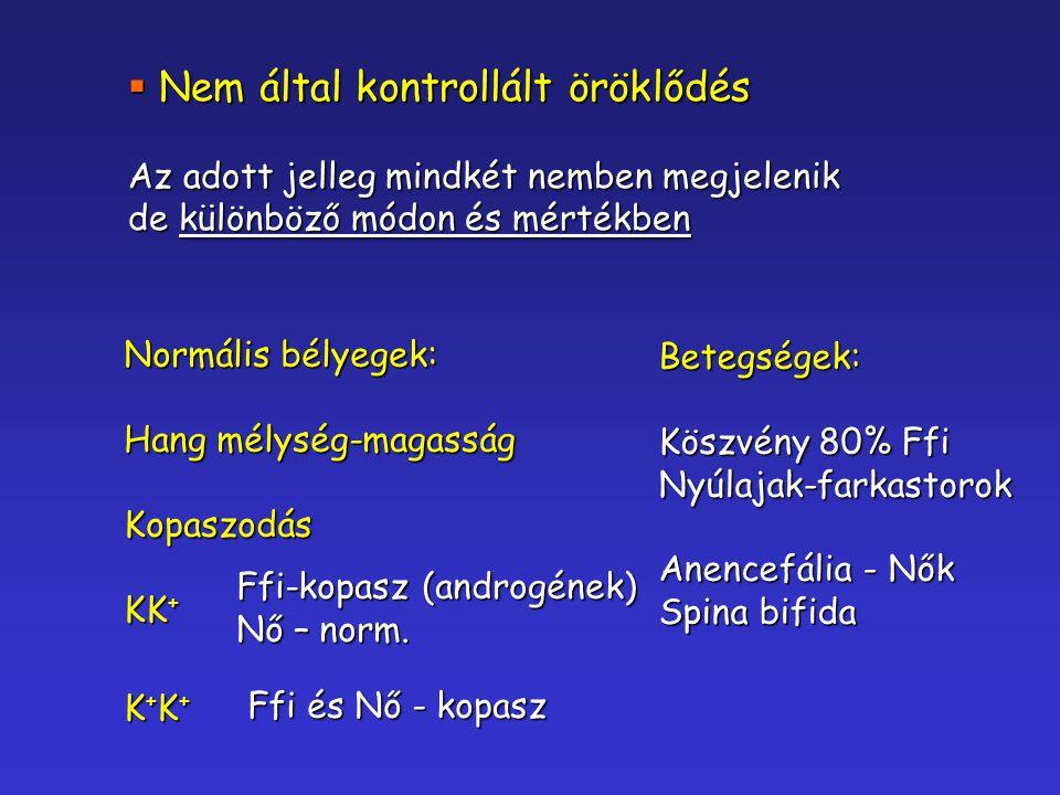  Nem által kontrollált öröklődés Az adott jelleg mindkét nemben megjelenik de különböző módon és mértékben Normális bélyegek: Hang mélység-magasság K