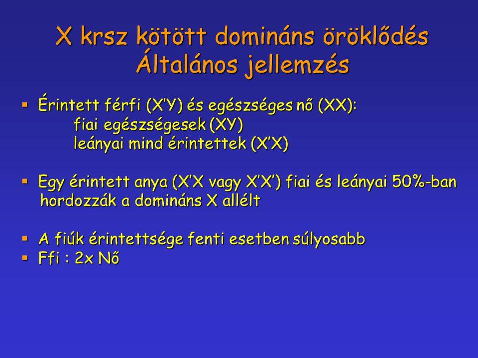 X krsz kötött domináns öröklődés Általános jellemzés  Érintett férfi (X'Y) és egészséges nő (XX): fiai egészségesek (XY) fiai egészségesek (XY) leány