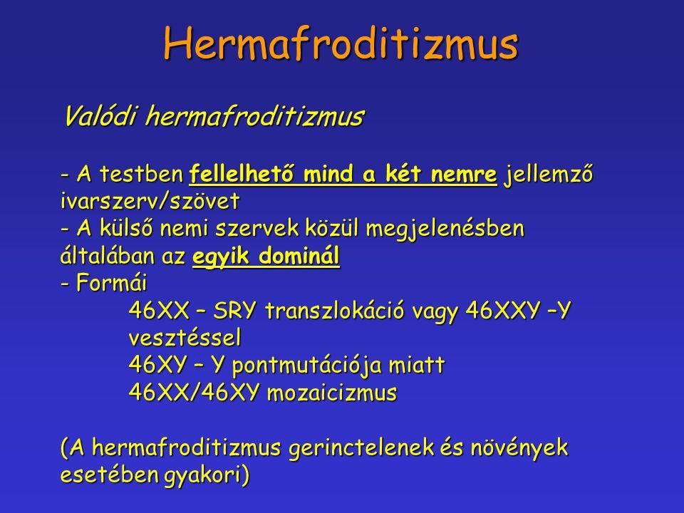 Hermafroditizmus Valódi hermafroditizmus - A testben fellelhető mind a két nemre jellemző ivarszerv/szövet - A külső nemi szervek közül megjelenésben
