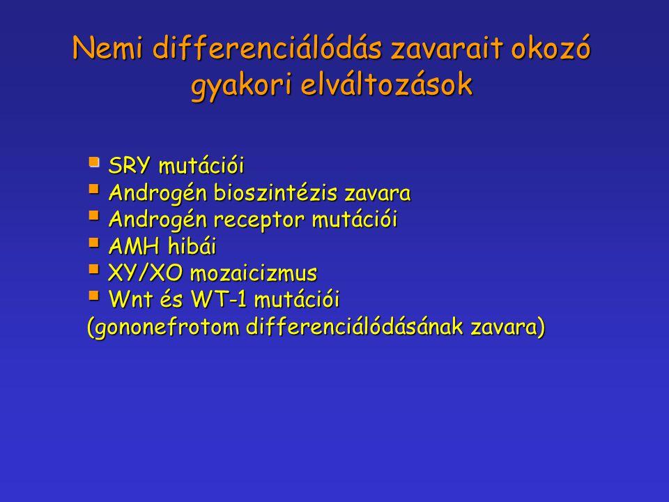 Nemi differenciálódás zavarait okozó gyakori elváltozások  SRY mutációi  Androgén bioszintézis zavara  Androgén receptor mutációi  AMH hibái  XY/