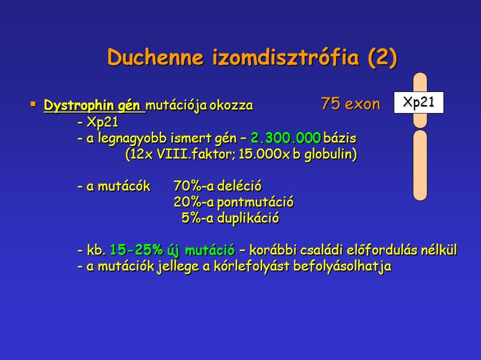  Dystrophin gén mutációja okozza - Xp21 - a legnagyobb ismert gén – 2.300.000 bázis (12x VIII.faktor; 15.000x b globulin) - a mutácók 70%-a deléció 2
