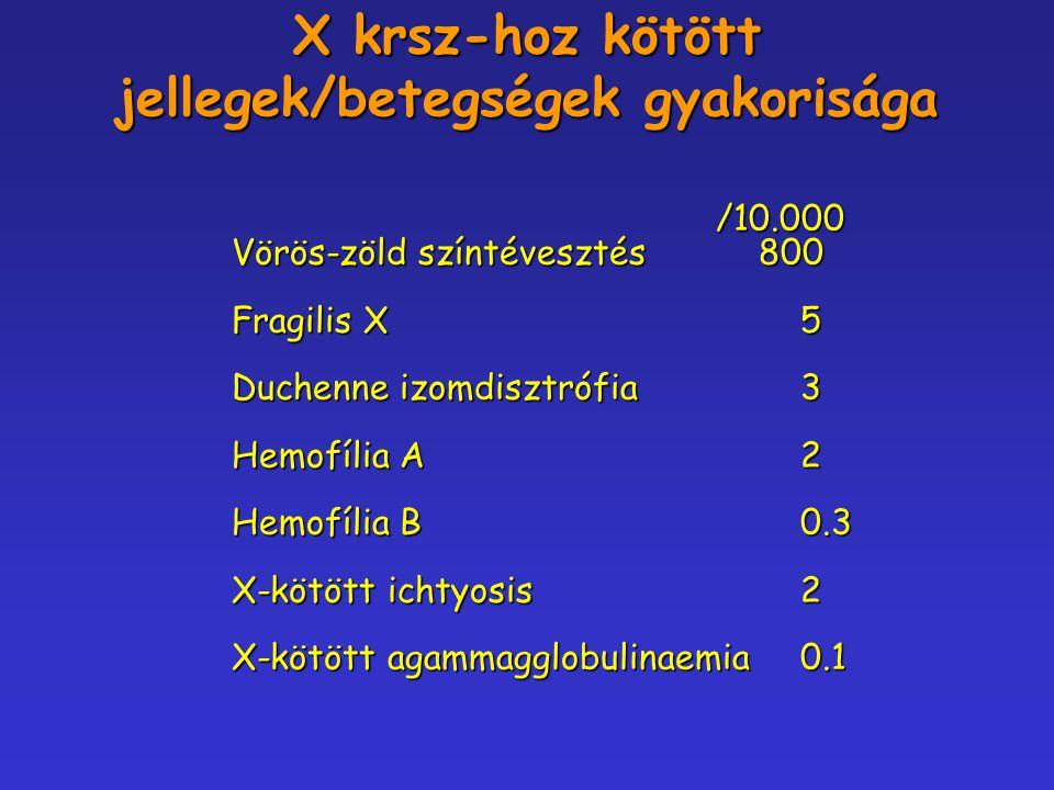 X krsz-hoz kötött jellegek/betegségek gyakorisága /10.000 /10.000 Vörös-zöld színtévesztés800 Fragilis X 5 Duchenne izomdisztrófia 3 Hemofília A 2 Hem