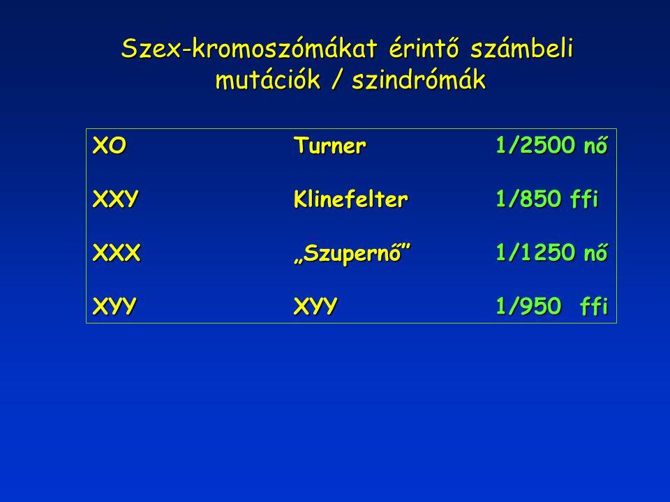 """Szex-kromoszómákat érintő számbeli mutációk / szindrómák mutációk / szindrómák XOTurner1/2500 nő XXYKlinefelter1/850 ffi XXX""""Szupernő""""1/1250 nő XYYXYY"""