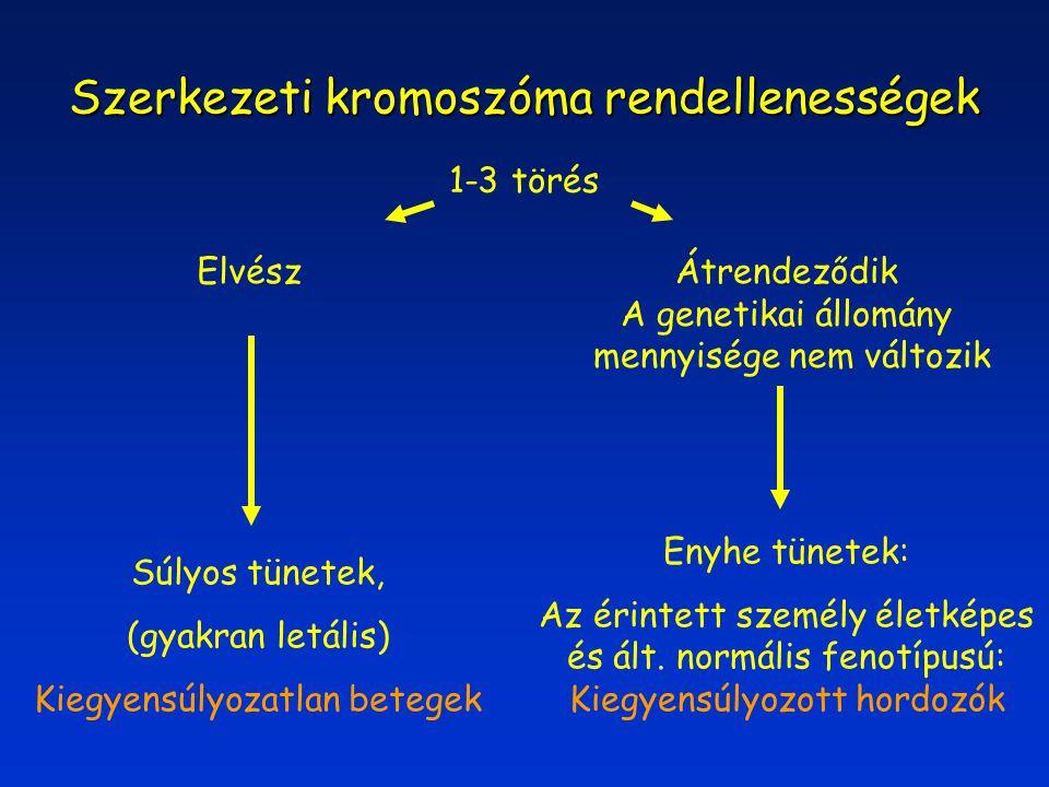 Szerkezeti kromoszóma rendellenességek 1-3 törés Enyhe tünetek: Az érintett személy életképes és ált. normális fenotípusú: Kiegyensúlyozott hordozók S