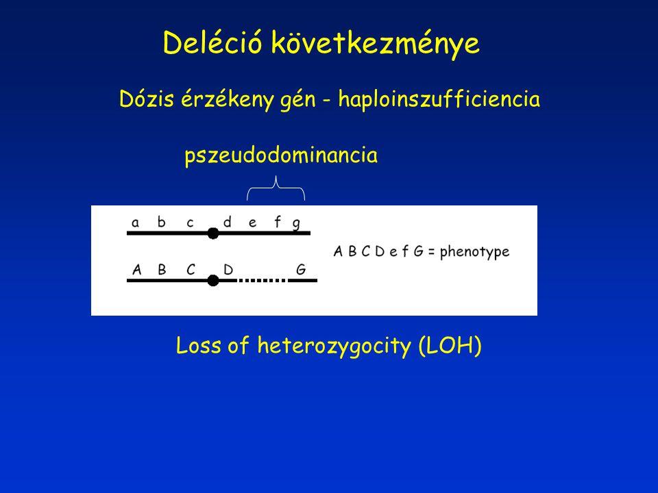 Loss of heterozygocity (LOH) Dózis érzékeny gén - haploinszufficiencia Deléció következménye pszeudodominancia