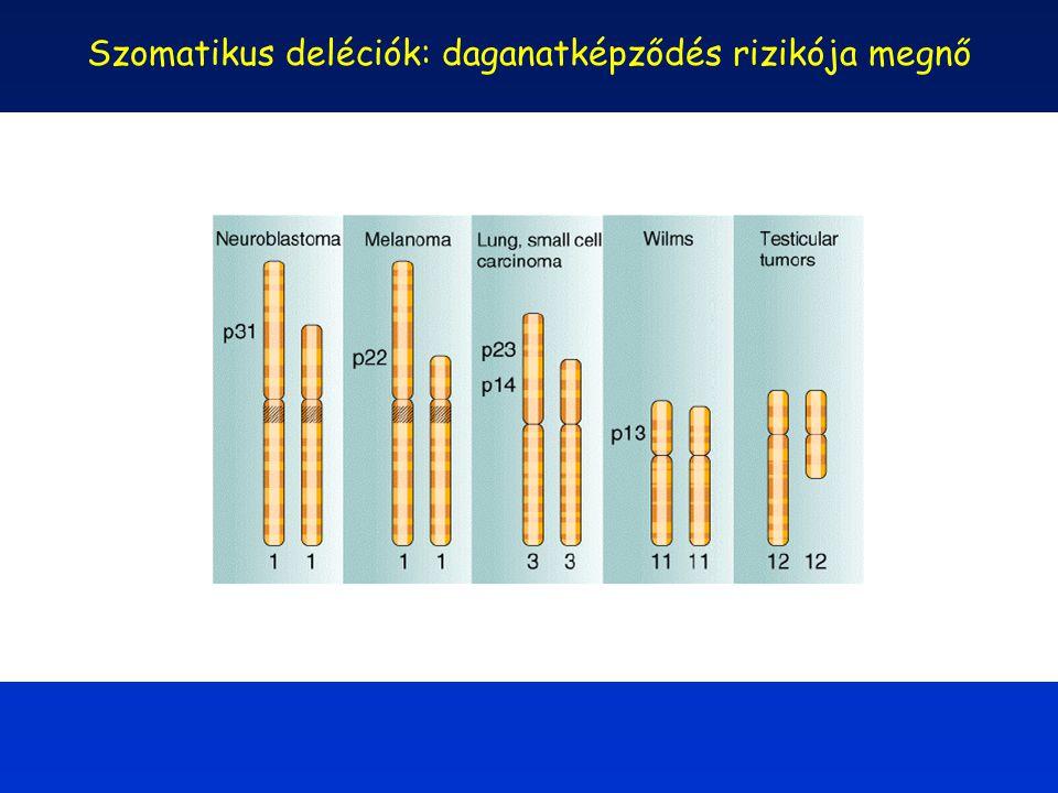 Szomatikus deléciók: daganatképződés rizikója megnő