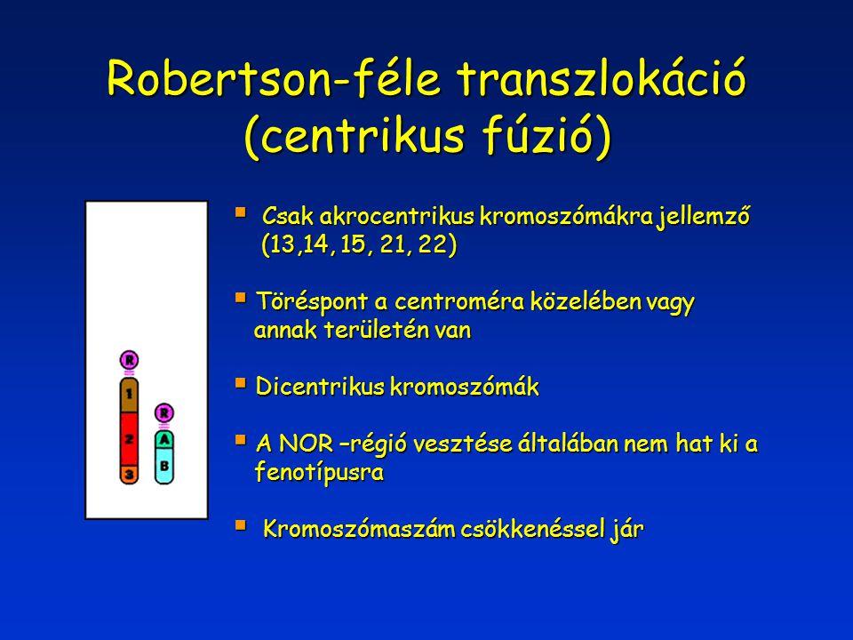 Robertson-féle transzlokáció (centrikus fúzió)  Csak akrocentrikus kromoszómákra jellemző (13,14, 15, 21, 22) (13,14, 15, 21, 22)  Töréspont a centr