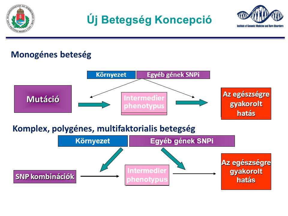 Egészségregyakorolthatás SNP kombinációk Egyéb gének SNPiKörnyezet Köztes fenotípus Az egészségre gyakorolthatás Intermedier phenotypus Komplex, polygénes, multifaktorialis betegség Egészségregyakorolthatás Mutáció Egyéb gének SNPiKörnyezet intermediate phenotype Az egészségre gyakorolthatás Intermedier phenotypus Monogénes beteség Új Betegség Koncepció