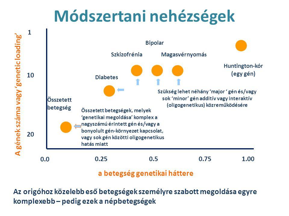1 10 20 0.0 0.250.50.751.00 a betegség genetikai háttere A gének száma vagy 'genetic loading' Összetett betegség Diabetes Szkizofrénia Bipolar Magasvérnyomá s Huntington-kór (egy gén) Szükség lehet néhány 'major ' gén és/vagy sok 'minor' gén additív vagy interaktív (oligogenetikus) közreműködésére Összetett betegségek, melyek 'genetikai megoldása' komplex a nagyszámú érintett gén és/vagy a bonyolult gén-környezet kapcsolat, vagy sok gén közötti oligogenetikus hatás miatt Az origóhoz közelebb eső betegségek személyre szabott megoldása egyre komplexebb – pedig ezek a népbetegségek Módszertani nehézségek