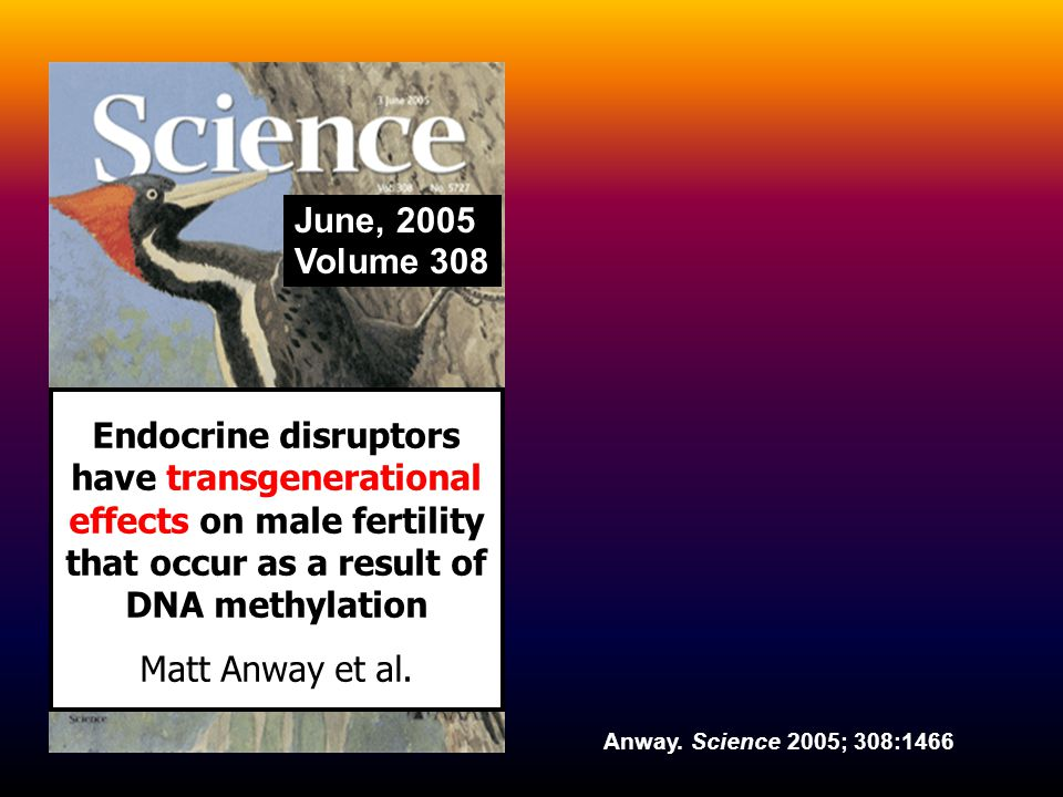 June, 2005 Volume 308 Endocrine disruptors have transgenerational effects on male fertility that occur as a result of DNA methylation Matt Anway et al.