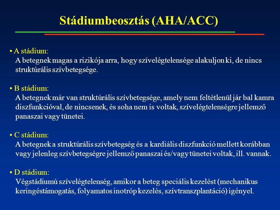 Stádiumbeosztás (AHA/ACC) A stádium: A betegnek magas a rizikója arra, hogy szívelégtelensége alakuljon ki, de nincs struktúrális szívbetegsége.