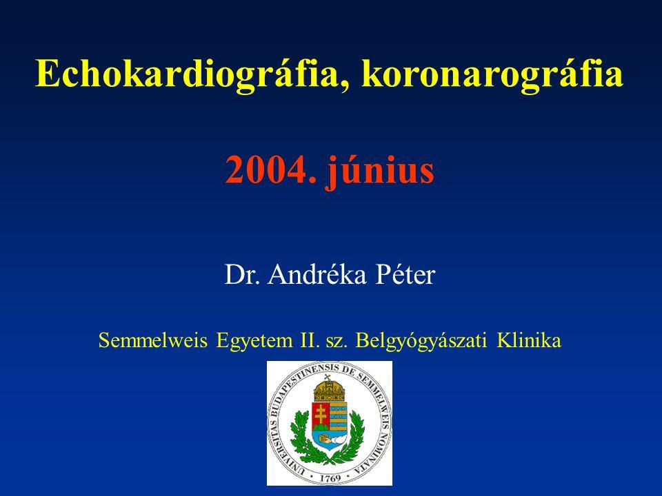 Echokardiográfia, koronarográfia 2004. június Dr. Andréka Péter Semmelweis Egyetem II. sz. Belgyógyászati Klinika