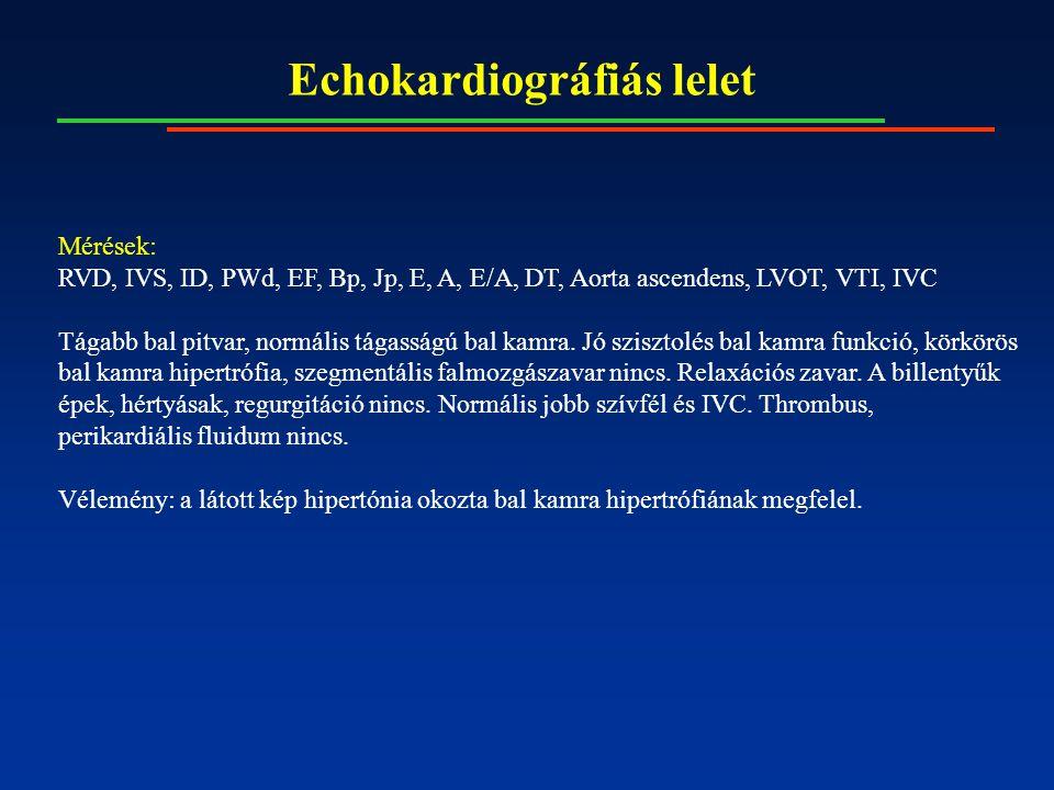 Echokardiográfiás lelet Mérések: RVD, IVS, ID, PWd, EF, Bp, Jp, E, A, E/A, DT, Aorta ascendens, LVOT, VTI, IVC Tágabb bal pitvar, normális tágasságú b
