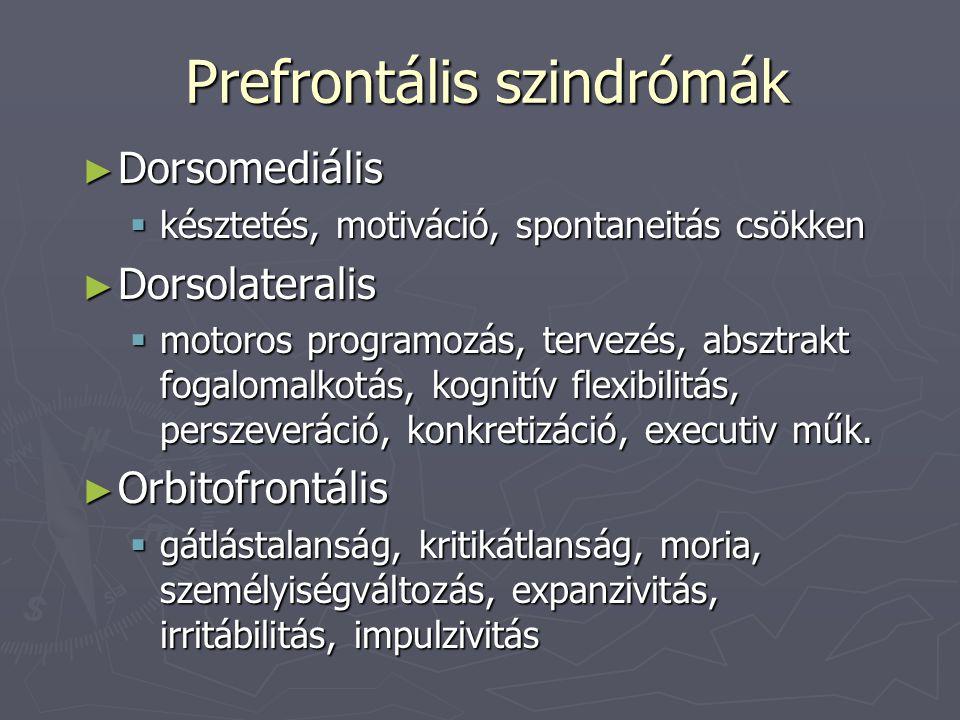 Prefrontális szindrómák ► Dorsomediális  késztetés, motiváció, spontaneitás csökken ► Dorsolateralis  motoros programozás, tervezés, absztrakt fogal