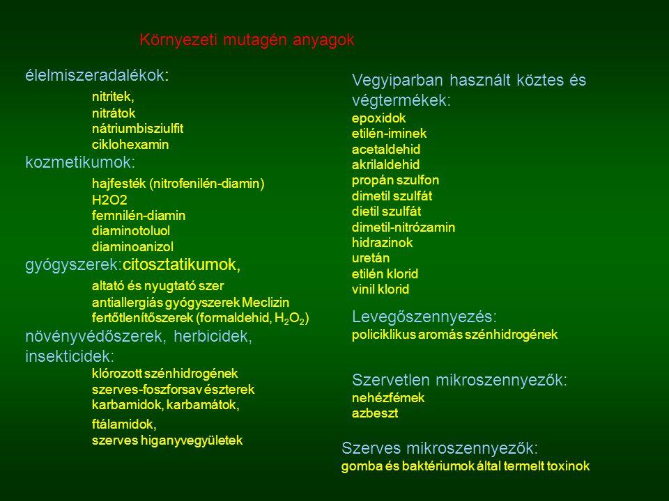 Környezeti mutagén anyagok élelmiszeradalékok: nitritek, nitrátok nátriumbisziulfit ciklohexamin kozmetikumok: hajfesték (nitrofenilén-diamin) H2O2 fe