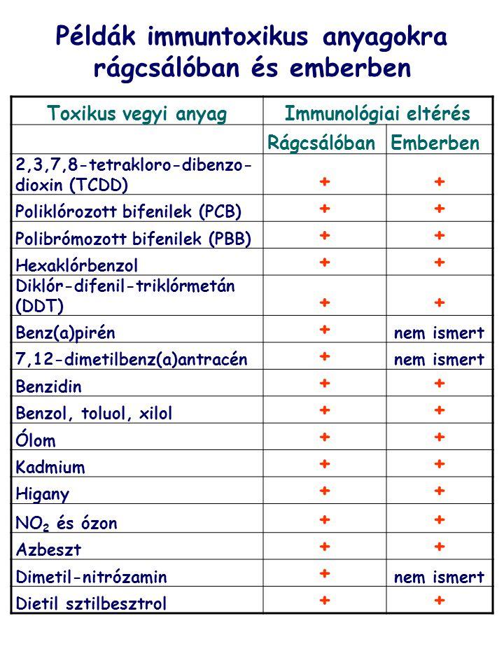 Toxikus vegyi anyagImmunológiai eltérés RágcsálóbanEmberben 2,3,7,8-tetrakloro-dibenzo- dioxin (TCDD) ++ Poliklórozott bifenilek (PCB) ++ Polibrómozot