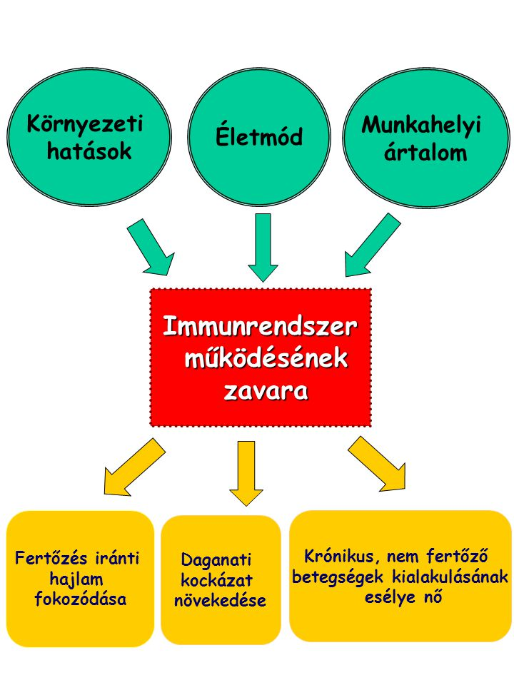 Környezeti hatások Életmód Munkahelyi ártalom Immunrendszer működésének működésének zavara zavara Fertőzés iránti hajlam fokozódása Daganati kockázat