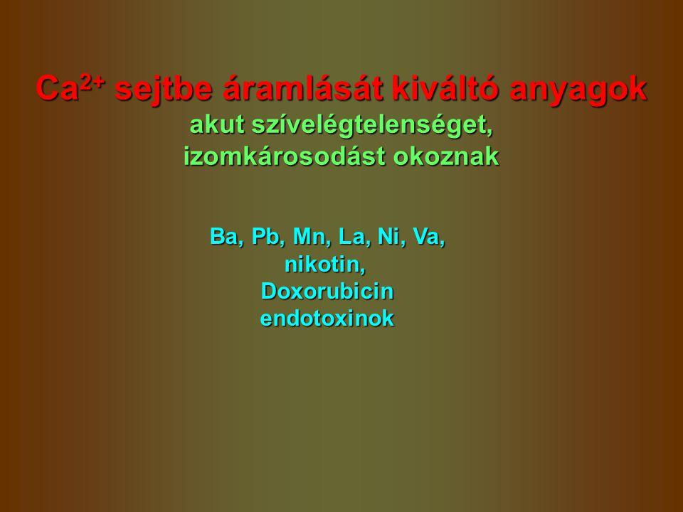 Ca 2+ sejtbe áramlását kiváltó anyagok akut szívelégtelenséget, izomkárosodást okoznak Ba, Pb, Mn, La, Ni, Va, nikotin,Doxorubicinendotoxinok