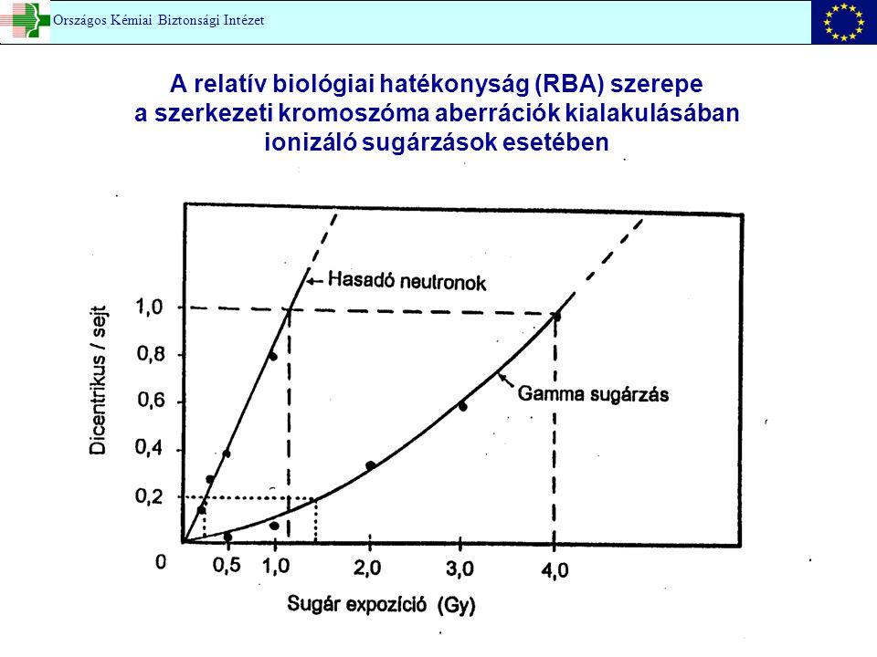 A relatív biológiai hatékonyság (RBA) szerepe a szerkezeti kromoszóma aberrációk kialakulásában ionizáló sugárzások esetében
