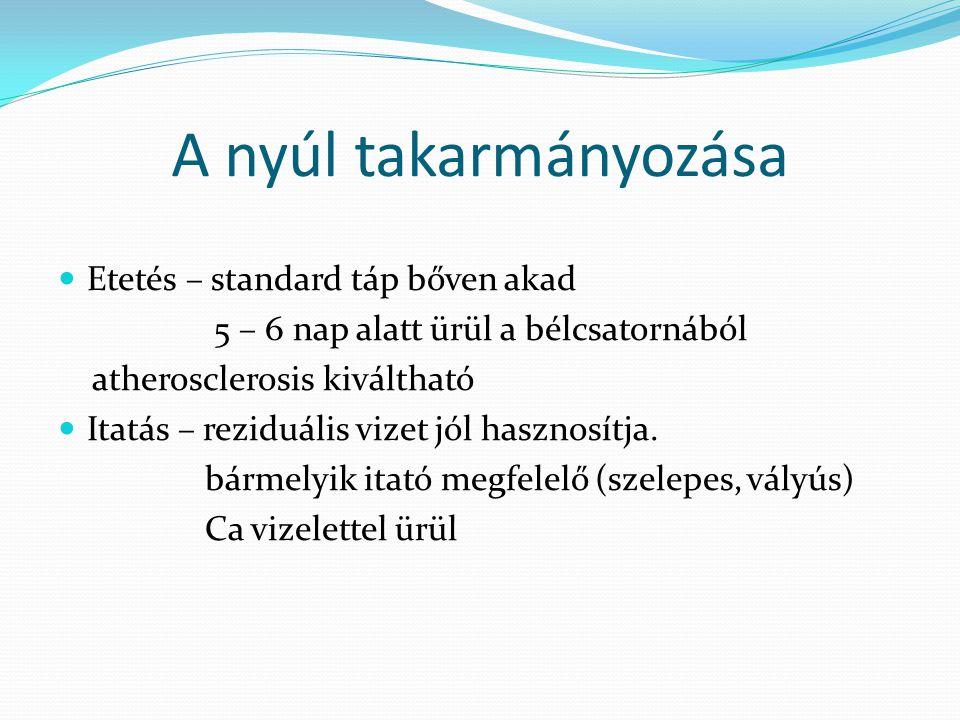 A nyúl takarmányozása Etetés – standard táp bőven akad 5 – 6 nap alatt ürül a bélcsatornából atherosclerosis kiváltható Itatás – reziduális vizet jól