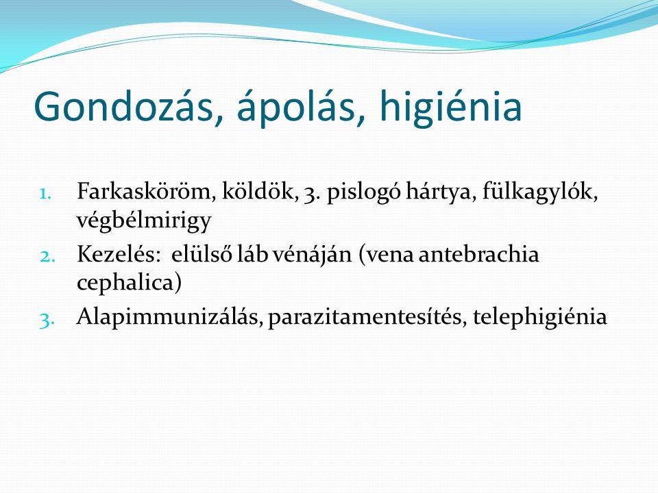 Gondozás, ápolás, higiénia 1. Farkasköröm, köldök, 3. pislogó hártya, fülkagylók, végbélmirigy 2. Kezelés: elülső láb vénáján (vena antebrachia cephal