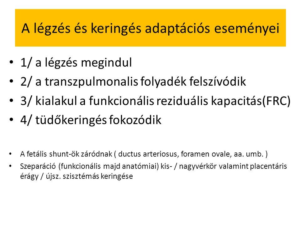 A légzés és keringés adaptációs eseményei 1/ a légzés megindul 2/ a transzpulmonalis folyadék felszívódik 3/ kialakul a funkcionális reziduális kapacitás(FRC) 4/ tüdőkeringés fokozódik A fetális shunt-ök záródnak ( ductus arteriosus, foramen ovale, aa.