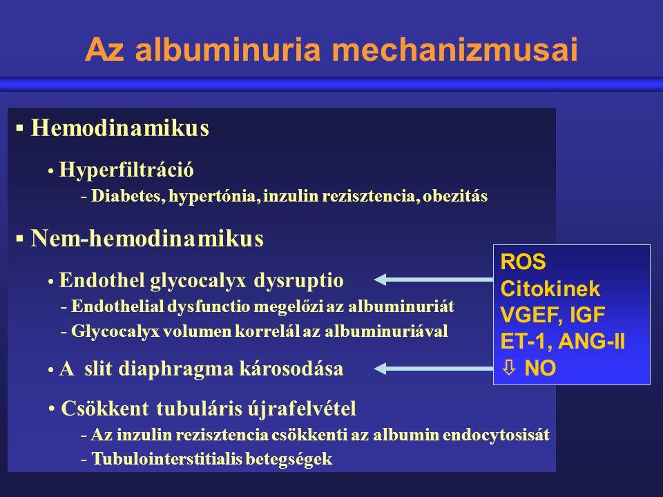 Az albuminuria mechanizmusai  Hemodinamikus Hyperfiltráció - Diabetes, hypertónia, inzulin rezisztencia, obezitás  Nem-hemodinamikus Endothel glycoc