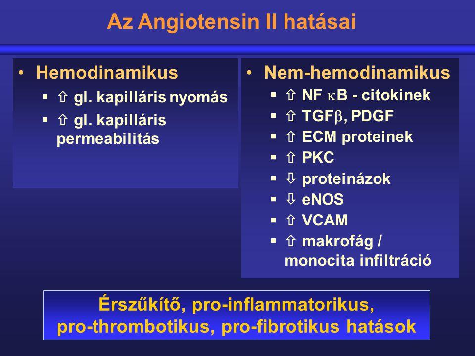 Hemodinamikus  gl. kapilláris nyomás  gl. kapilláris permeabilitás Nem-hemodinamikus  NF  B - citokinek  TGF , PDGF  ECM proteinek  PKC