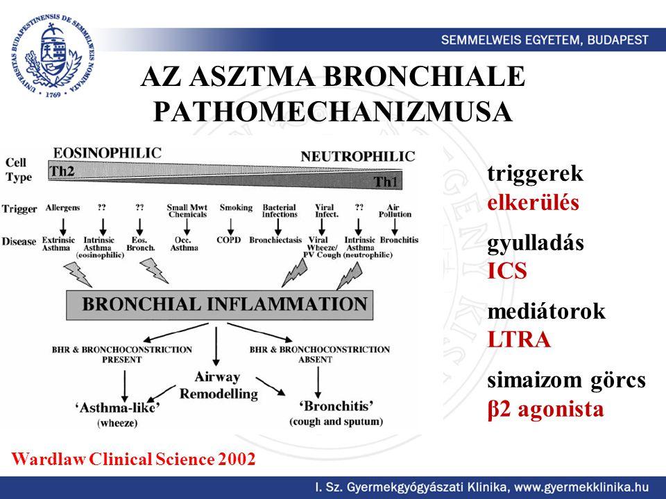 AZ ASZTMA BRONCHIALE PATHOMECHANIZMUSA Wardlaw Clinical Science 2002 triggerek elkerülés gyulladás ICS mediátorok LTRA simaizom görcs β2 agonista