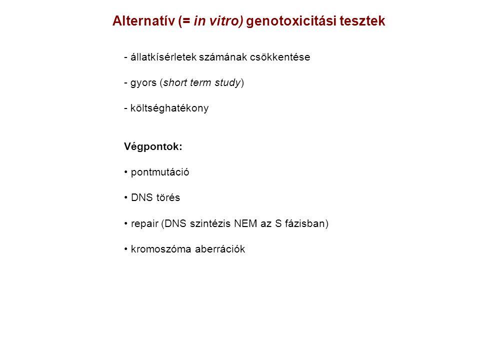 Alternatív (= in vitro) genotoxicitási tesztek - állatkísérletek számának csökkentése - gyors (short term study) - költséghatékony Végpontok: pontmutá