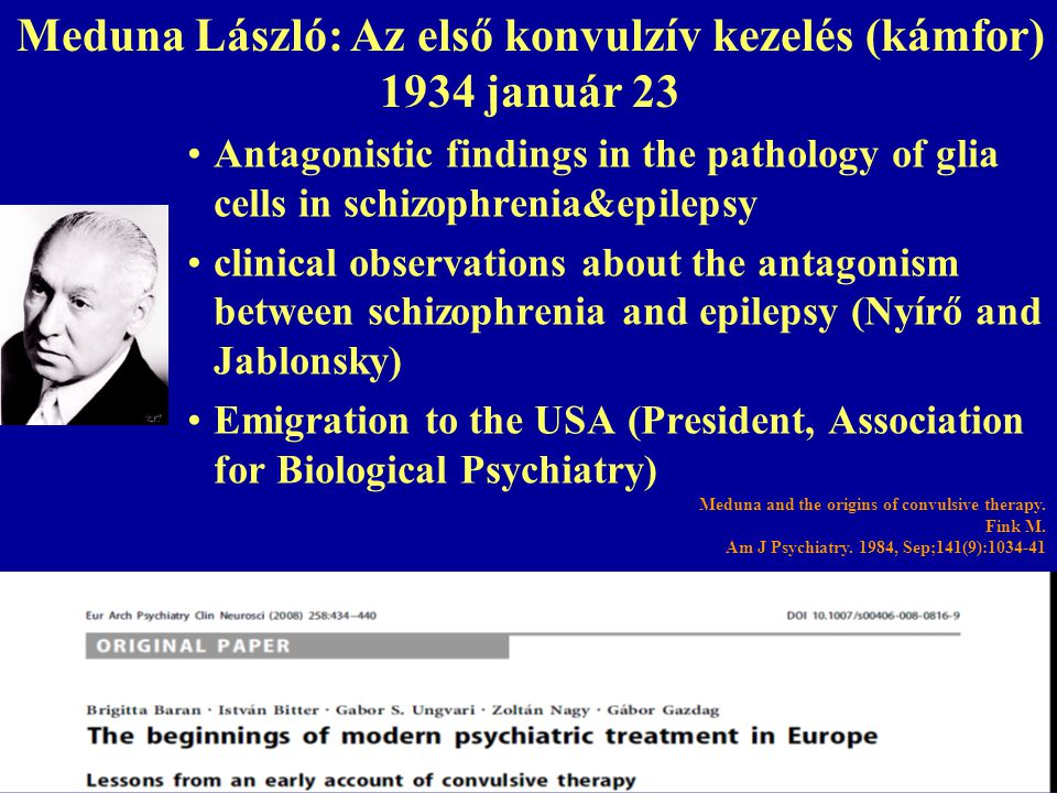 2014. 07. 23.67 Antagonistic findings in the pathology of glia cells in schizophrenia&epilepsy clinical observations about the antagonism between schi