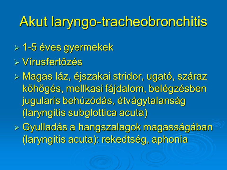 Akut laryngo-tracheobronchitis  1-5 éves gyermekek  Vírusfertőzés  Magas láz, éjszakai stridor, ugató, száraz köhögés, mellkasi fájdalom, belégzésb
