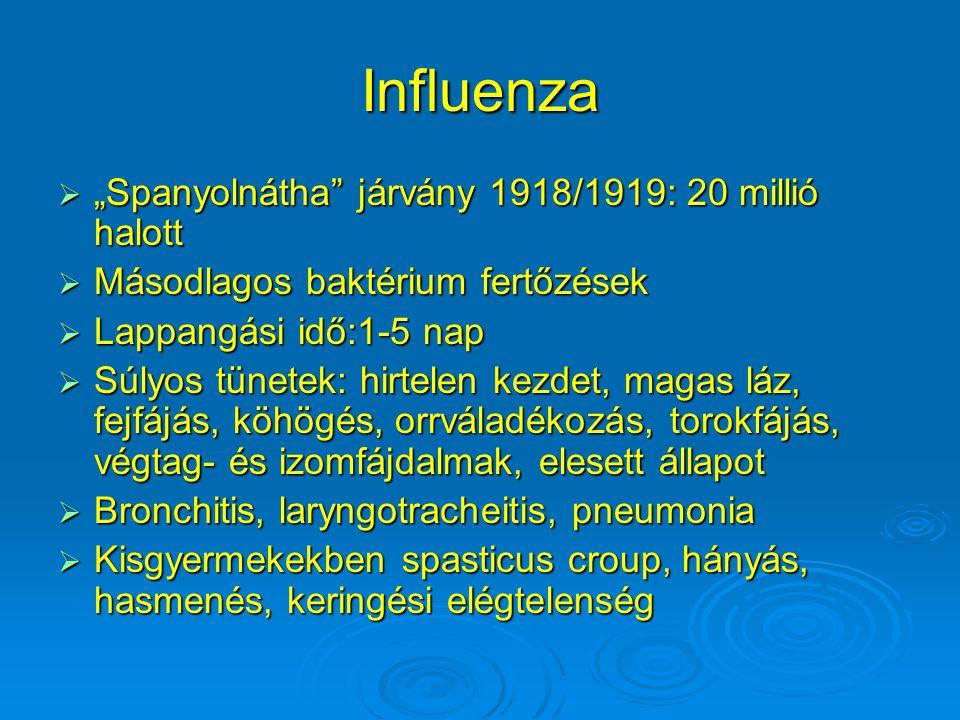 """Influenza  """"Spanyolnátha járvány 1918/1919: 20 millió halott  Másodlagos baktérium fertőzések  Lappangási idő:1-5 nap  Súlyos tünetek: hirtelen kezdet, magas láz, fejfájás, köhögés, orrváladékozás, torokfájás, végtag- és izomfájdalmak, elesett állapot  Bronchitis, laryngotracheitis, pneumonia  Kisgyermekekben spasticus croup, hányás, hasmenés, keringési elégtelenség"""