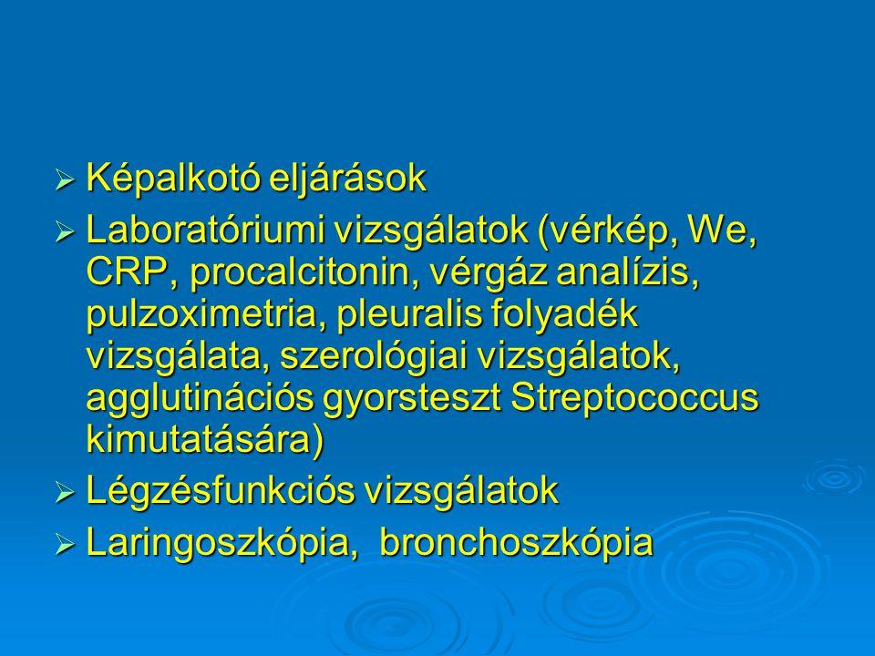 Kórokozó vírusok  Rhinovírusok  Respiratory syncytial virus (RSV)  Parainfluenzavírusok  Influenzavírusok  Coxsackie A és B  Adenovírusok  Humán metapneumovírus (HMPV) (paramyxovírus) www.far3.static.flickr.com