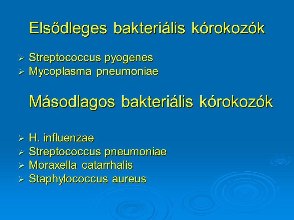 Elsődleges bakteriális kórokozók  Streptococcus pyogenes  Mycoplasma pneumoniae Másodlagos bakteriális kórokozók  H.