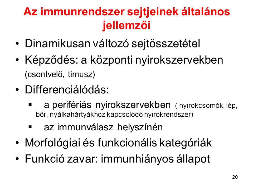 20 Az immunrendszer sejtjeinek általános jellemzői Dinamikusan változó sejtösszetétel Képződés: a központi nyirokszervekben (csontvelő, timusz) Differ